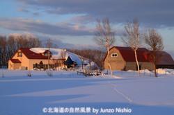 冬/2019年(12枚)