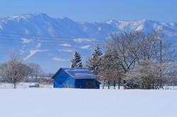 霧氷の朝4_石狩市郊外