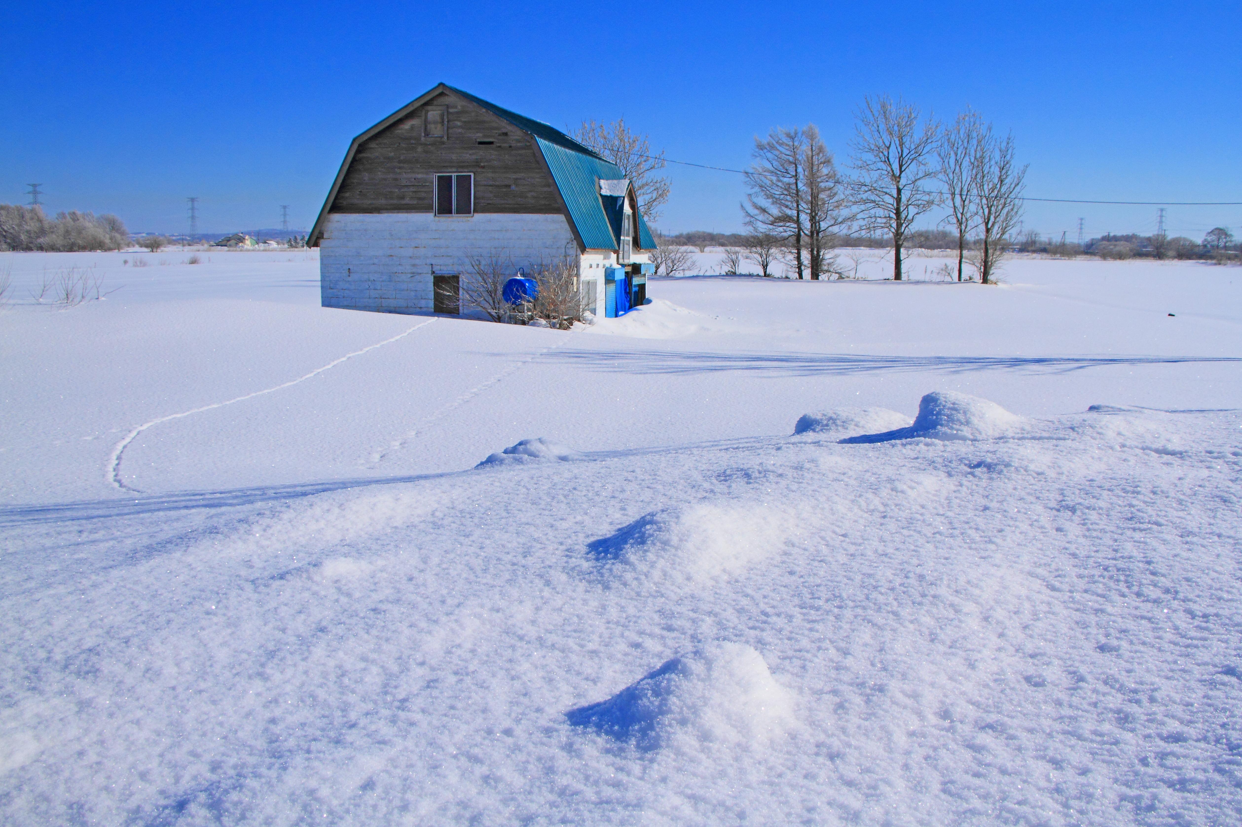 冬晴れの朝_石狩市郊外