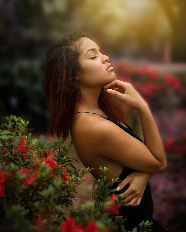Rose garden photography