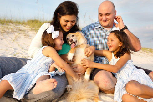 Family beach photography with pets