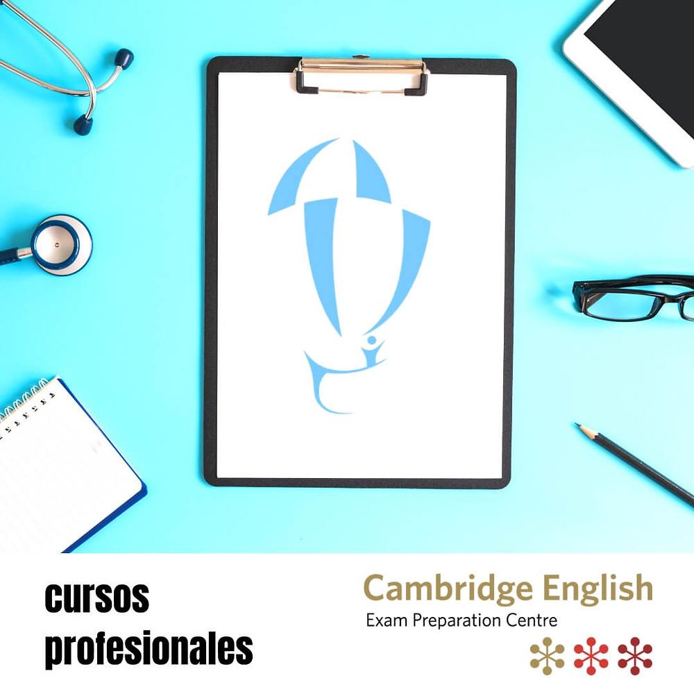 cursos de inglés profesional online valladolid
