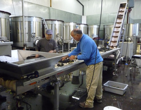 Claude and Don at the Sorting Line