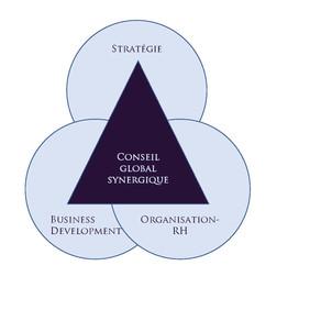 PME : Pourquoi agilité et conseil holistique sont faits pour vous ?