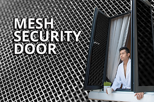 LPsecuritymesh.png