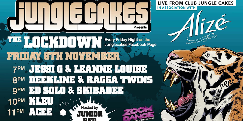 Jungle Cakes. Zoom Dance. The online Rave.