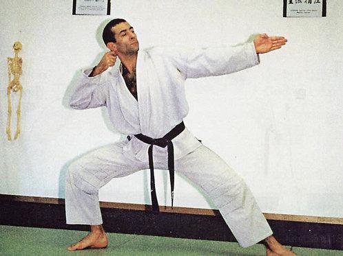 Programme Technique Officiel/10ème au 6ème Kyu/Ecole de Ninpo Nin-Jutsu