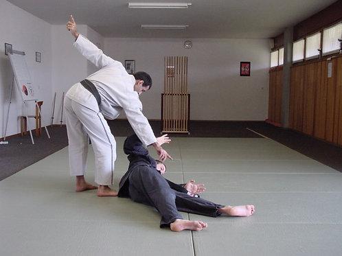 Programme Technique Officiel/5ème au 1er Kyu/Ecole de Ninpo Nin-Jutsu