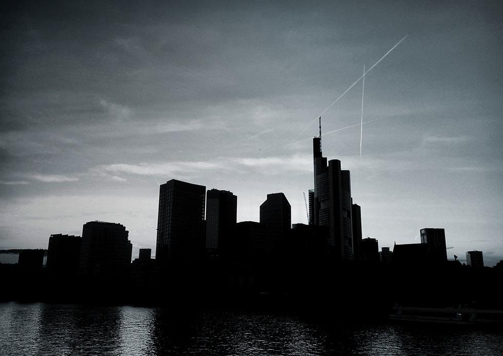 Skyline-FFM-duplex.jpg