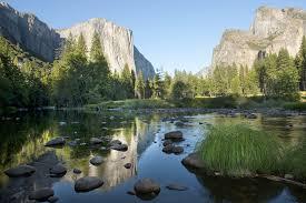 Yosemite N.P., California