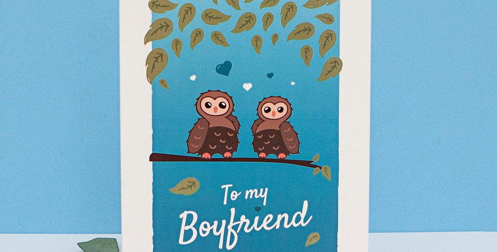 Blue To my Boyfriend Valentines Day Card Cute Owls