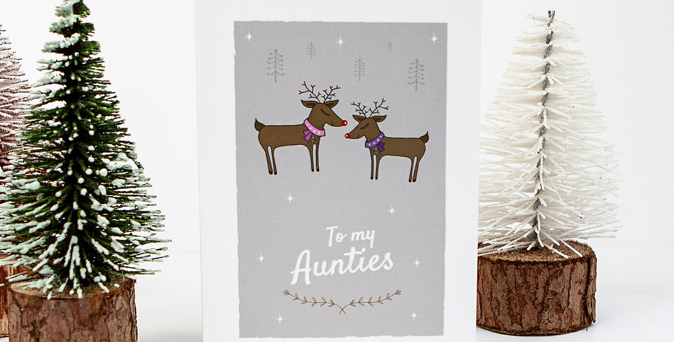 To my lesbian aunties Xmas greetings card