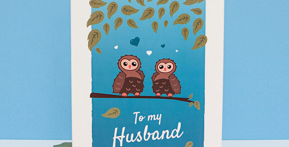 To my Husband Valentines Day Greeting Card Blue Cute Owls