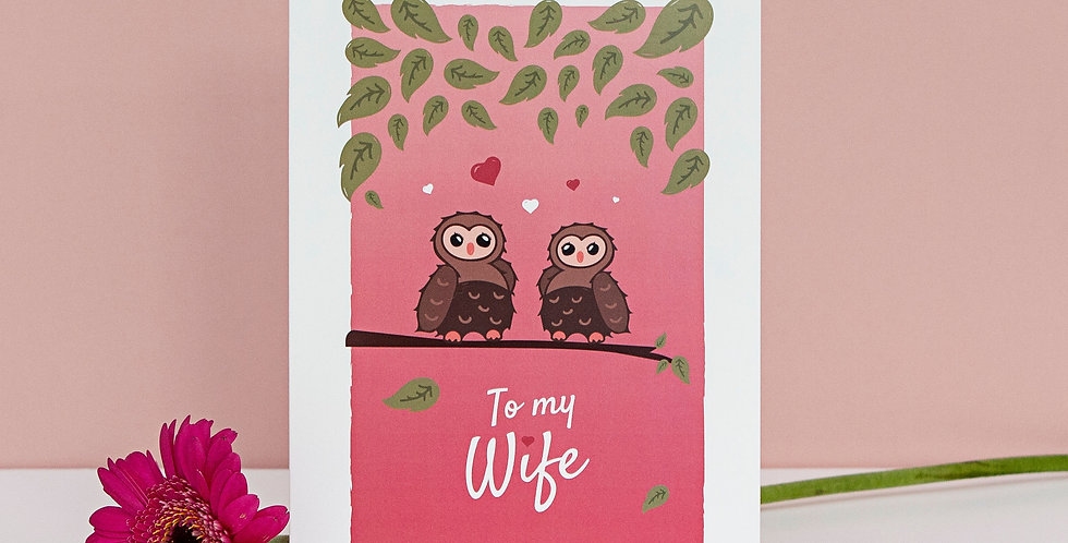 Pink To My Wife Valentines Day Greetings Card Cute Owls