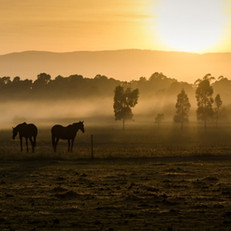 Coldstream, Yarra Ranges VIC