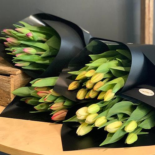 Tulip Market Bunch