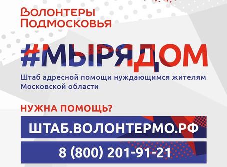 Жителям Подмосковья помогут волонтеры