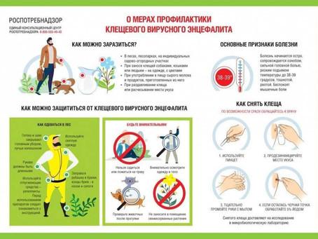 О мерах профилактики клещевого вирусного энцефалита