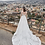 l'amour bloom wedding dress