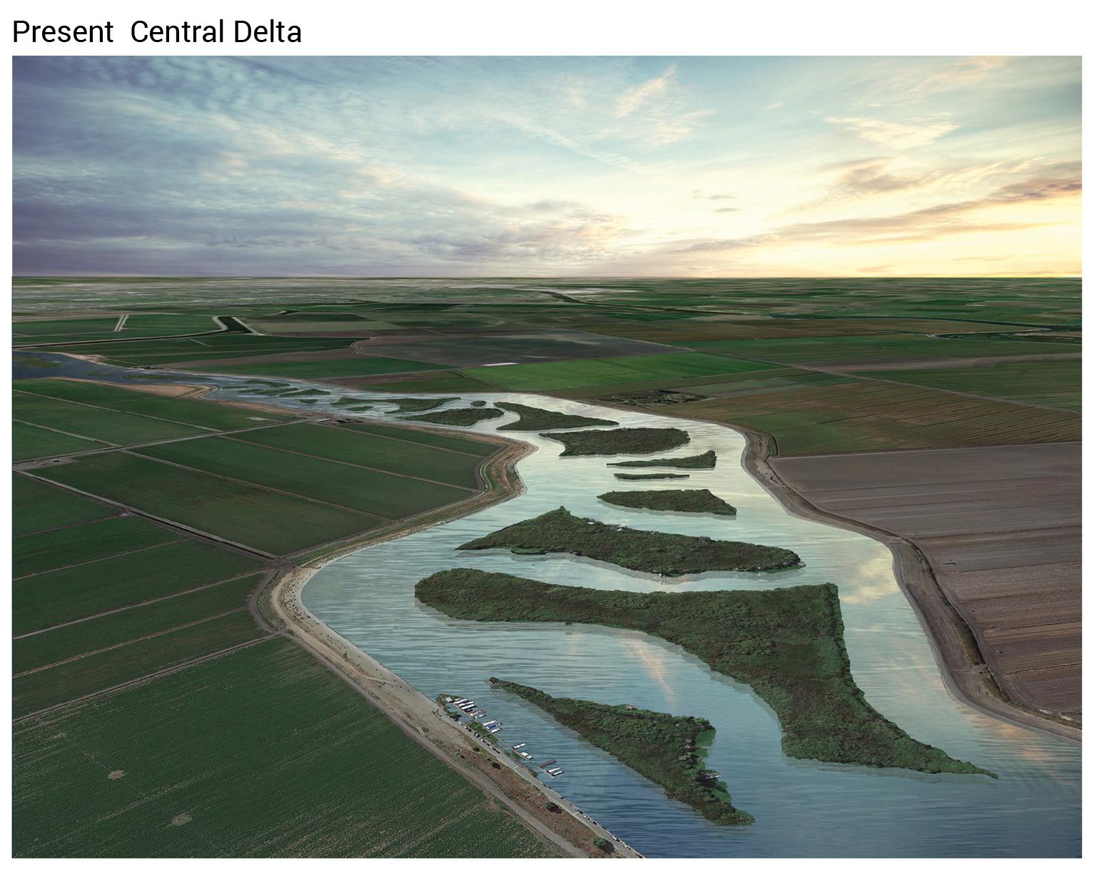 Delta 12