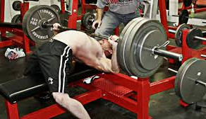 Bench Press - Arch, or No Arch