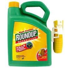 Pesticides Negative Impact on Health