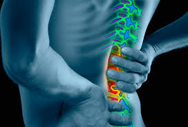 Lower Back Pain Camden Total Health Performance Narellan Ingleburn Campbelltown Macarthur Exercise physiology
