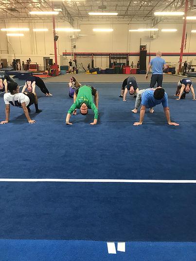 Adult Gymnastics 4.jpg