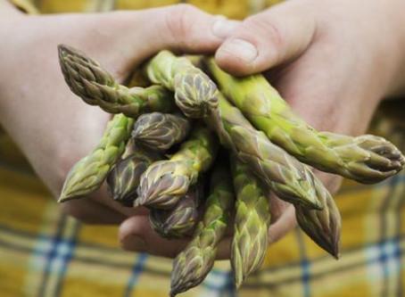 Los espárragos y otros alimentos favorecen la metástasis del cáncer, según un estudio científico
