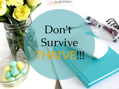 Don't Survive Thrive
