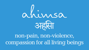 Cultivating Ahimsa