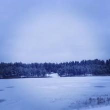 Valgehobuse järv