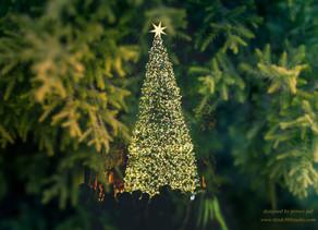 Merry be, Festive season is here.