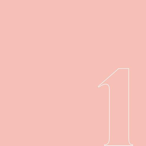 1 culotte Rosa