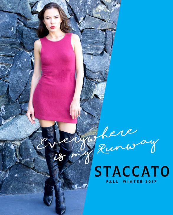 STACCATO Campaign