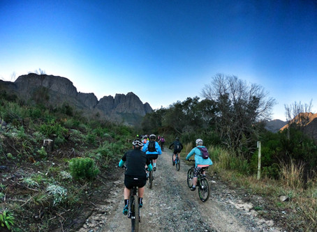 Getting More Women on Bikes : Ladies Rides with the FNB Wines2Whales and Biking in the Bosch.