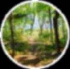DPJ-Trails Circle-1.png