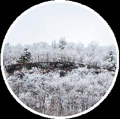 DPJ-Winter Storm-1.png