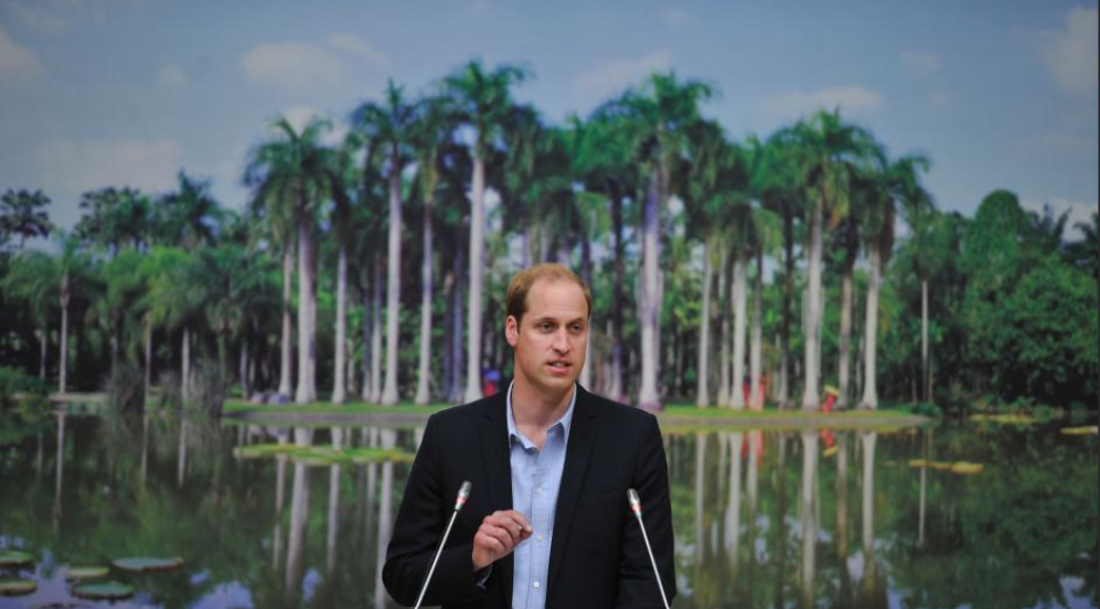 Prince William delivered a speech in Yunnan calling for the protection of wild animals