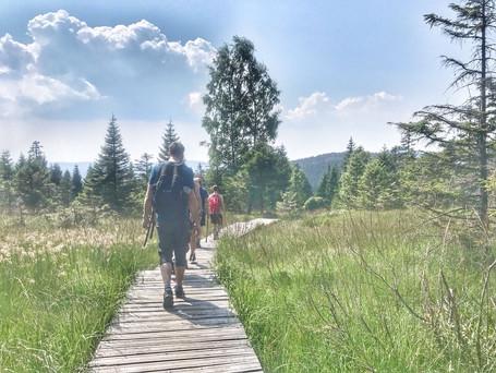 Wandern und Yoga, Kulturschätze und Wellness - 4 unglaubliche Tage im Harz vom  01. bis 04.10.2020