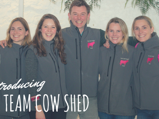 Team Cow Shed...