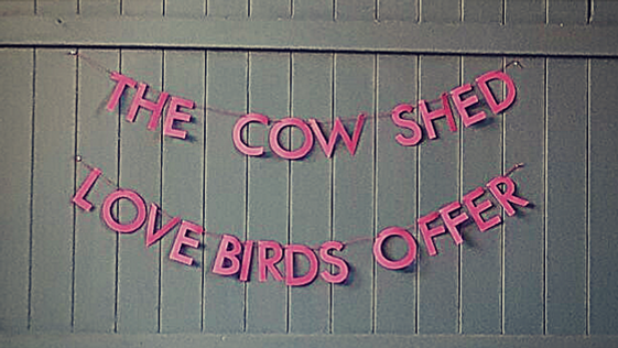 Valentine's Day Love Birds Offer | The Cow Shed Crail - Unique Fife