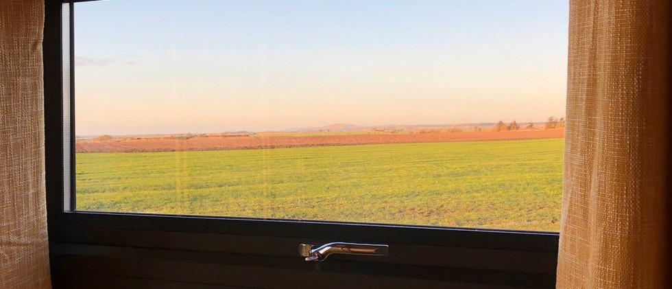 Side window view.jpg