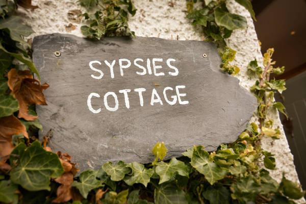 34158_Sypsies_01.jpg