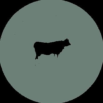 Round Logo Green_2x.png