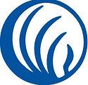 nami-logo-blue_logo-cropped.jpg