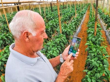 DF Rural: aplicativo ajuda e protege produtores
