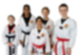 Taekwondo Online | Untn Online Taekwondo Training