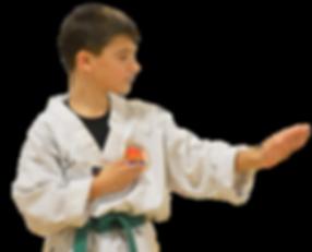Taekwondo Student Online