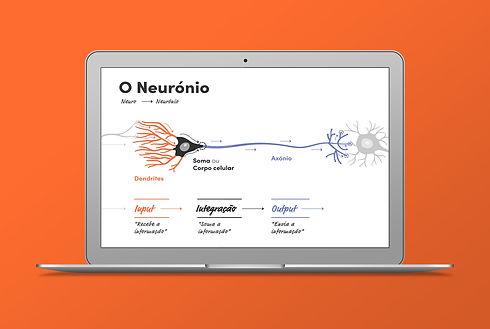 neurociencia1.jpg